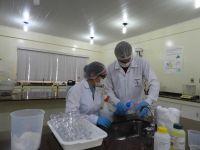 Campus_Ji-Paraná_-_Produção_de_álcool_em_gel_5