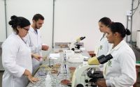 projeto-microbiologia_800px-006