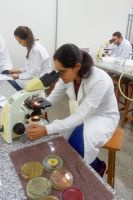 projeto-microbiologia_800px-007